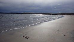 Pláž pár km za Raufarhöfnom, na ktorej sme často našli vyplavené mŕtve medúzy...