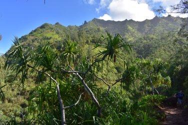Aj milovníci hôr ocenia výhľady z trailu...