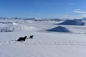 Zamrznuté jazero počas zimy.