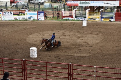 Na štadióne bola dostupná wifi, takže sme si obaja prišli na svoje. Ja som obdivovala kone a Peťo surfoval a občas obdivoval jazdkyne :)