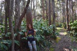 Devastation Trail sa v poslednej časti zmenila z čiernej lunárnej krajiny na krajinu s bohatou vegetáciou kadejakých druhov.