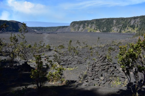 Záverečný pohľad na kráter Kīlauea Iki. Pri týchto malých zelených kríčkoch oxidovali spomínané osy, takže ja som tých posledných pár metrov prebehla najrýchlejšie, ako som vedela.