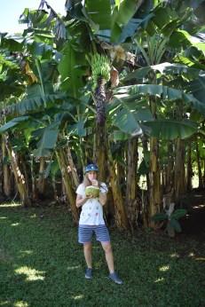 Prvý čerstvý kokos v mojom živote. Teda naozaj čerstvý, v krajine kde rastú len tak hocikde. Zároveň ale aj posledný s tou plastovou slamkou...