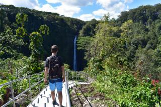 """Odporúčam prejsť celý """"trail"""". Väčšina lenivých turistov ide len priamo k vodopádu a okruh vynechajú, takže hustú džungľu má človek väčšinou len pre seba. Tomu, že je vodopád bližšie, bude napovedať aj lepší stav chodníka, až po tieto vybudované schody vedúce na vyhliadku."""