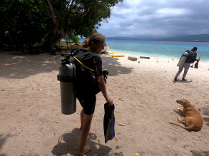 1-dňový kurz potápania